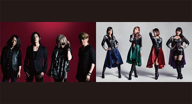 RIDER CHIPS / 仮面ライダーGIRLS