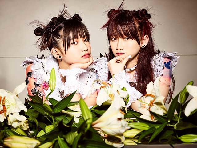 The Idol Formerly Known As LADYBABY / Hello Sleepwalkers